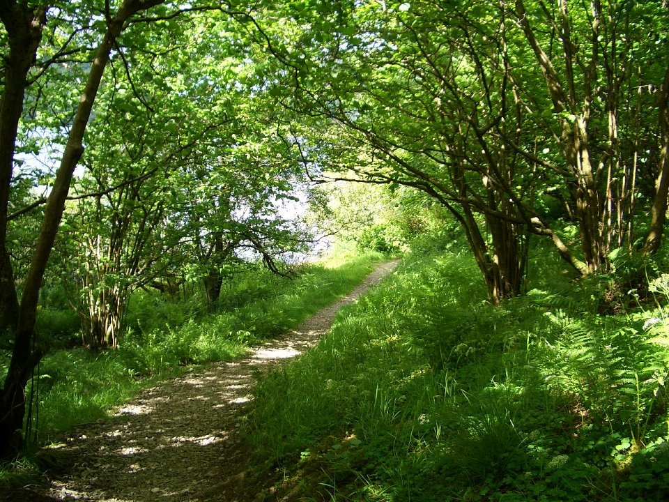 Footpath near Sykeside camp site in the Lake District